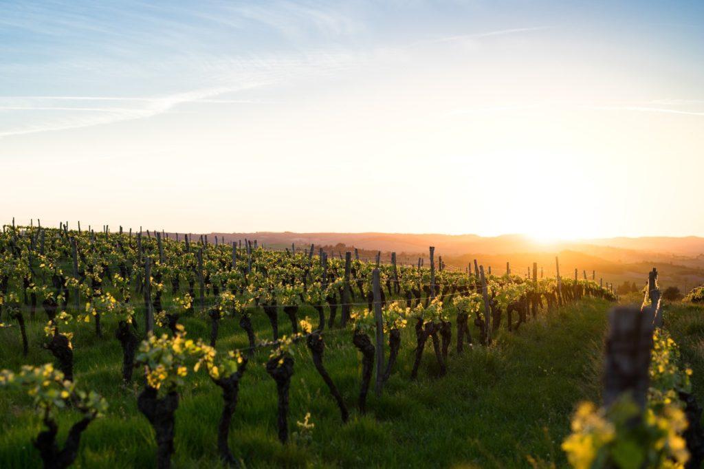 La imagen tiene un atributo ALT vacío; su nombre de archivo es Ekin-Breakfast-Rioja-Alavesa-1024x682.jpg